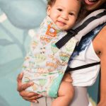 Tula-Baby-Carrier-Dew-Drop.jpg